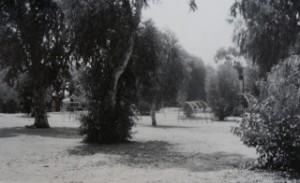 Park nabij Jaffa, daaronder de begraafplaats van Salama (uit: Ilan Pappe, De etnische zuivering van Palestina)