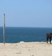 Gaza, de zee. Foto Lydia de Leeuw; meer foto's op http://asecondglance.wordpress.com